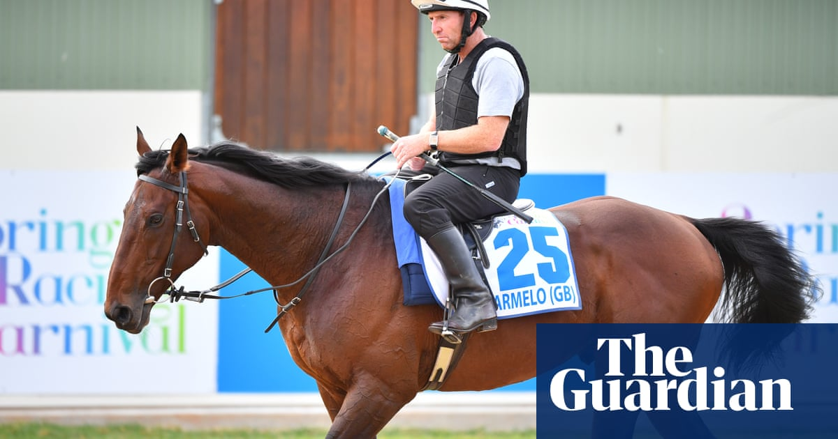 Trainer to appeal after vets withdraw Marmelo from Melbourne Cup