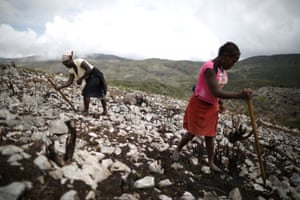 Women use a homemade tool to make holes and sow seeds in a field near Boucan Ferdinand