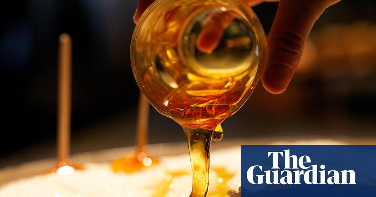 b6111242766 Trade war  Canadians horrified to learn some maple syrup is from ... the US
