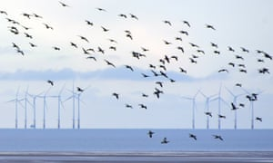 Robin Rigg, Dumfries, Scotland's first offshore windfarm.