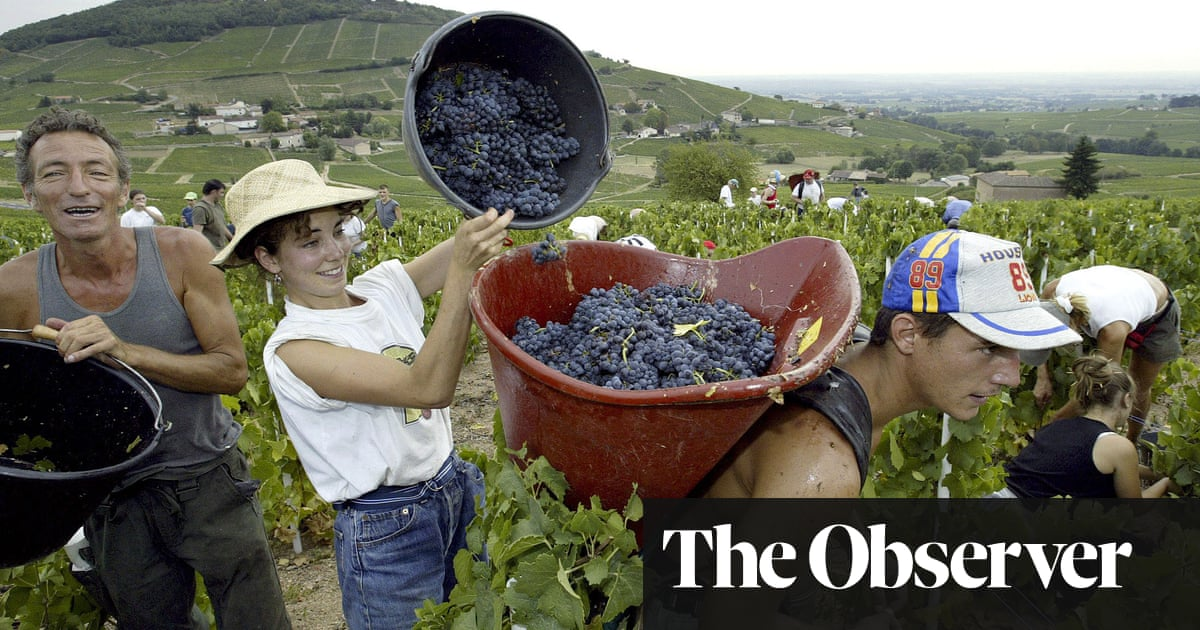 Despite everything, France is still the home of glorious wine