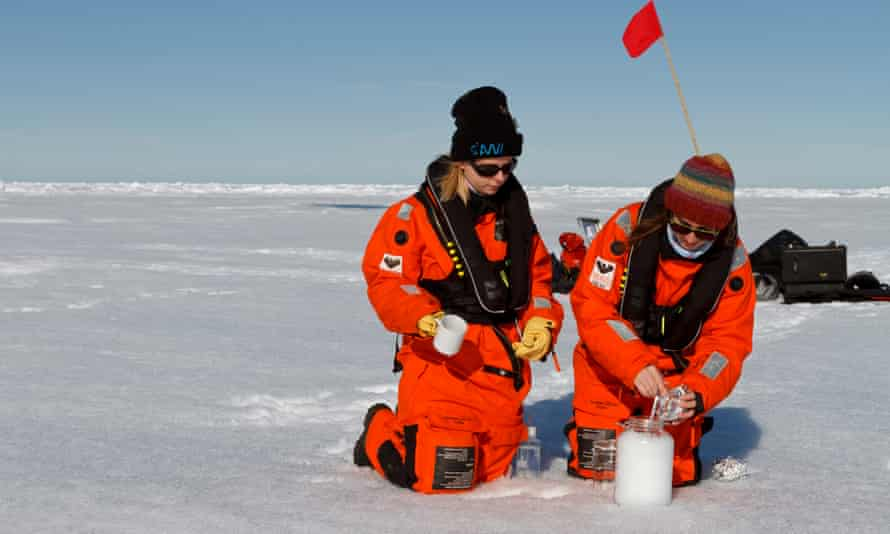 Researchers from the icebreaker Polarstern collect snow samples from the Arctic sea ice.