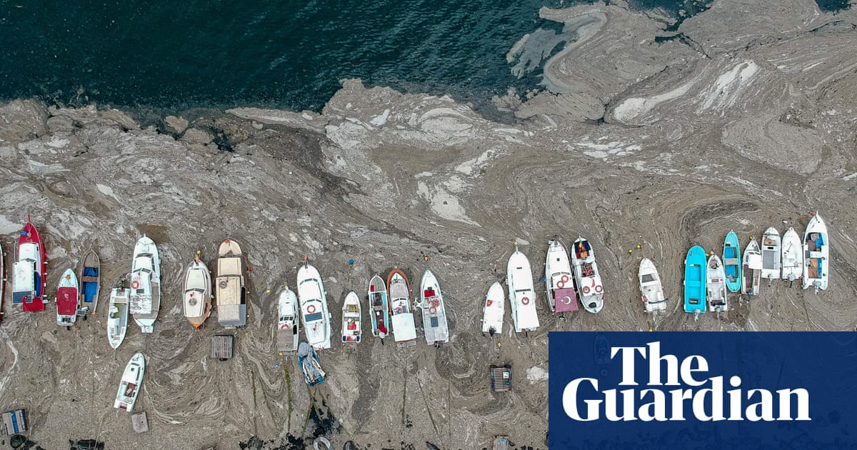 'Sea snot' covers Turkish coast, threatening fishing industry