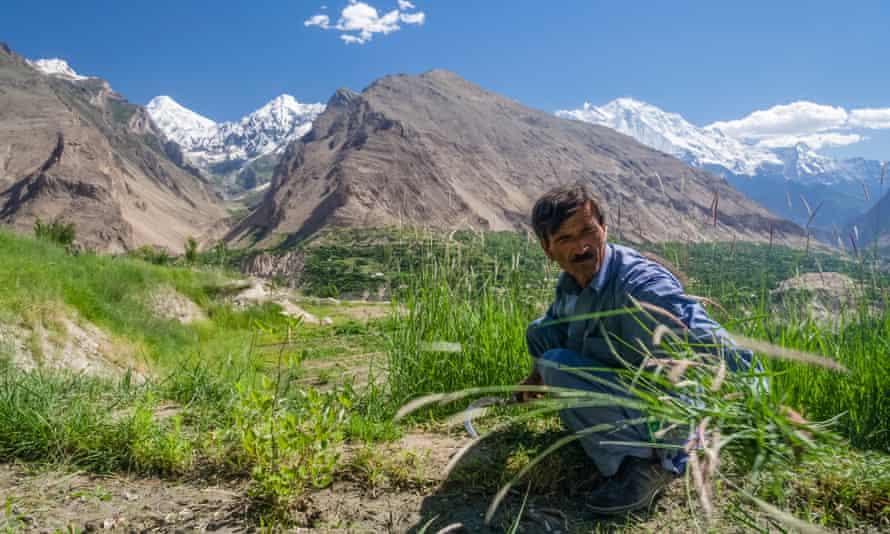 A man tends a vegetable plot in the Karakoram range.