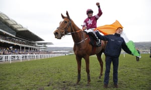 Samcro had his fans in ecstasy after winning a novice hurdle at the Cheltenham Festival in March.