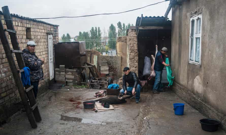 A family in Ak-Zhar slaughter a sheep ready for a pre-wedding party