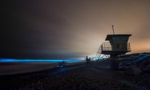 Bioluminescence in San Diego. The natural event has been likened to 'breaking a light stick'.
