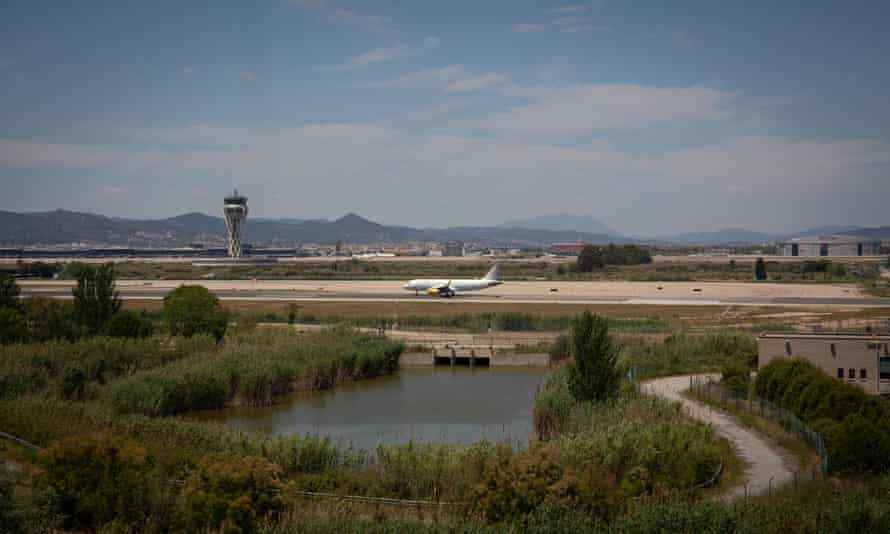 A plane at Barcelona airport, near the natural protected area of La Ricarda.