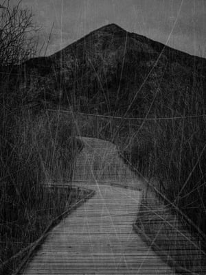 'There is a path beneath my feet that cuts through the middle of the marsh, flanked on either side by the rushes and the tall grasses that waver in the breeze,' says philosophy teacher turned photographer Larive of this image from his series La Vue Sauvage. 'The sun reflects on this wooden walkway, creating the effect of a silver ribbon. And then a cloud obscurs the sun, and it seems as if the ribbon has been cut'