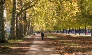 Autumn day in Hyde Park