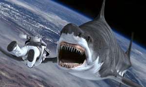 Sharknado 4: surely someone should try to get a data storage tag on that shark?