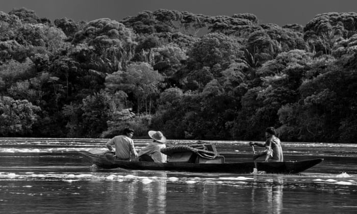 Image result for embrace of the serpent