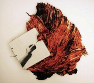 Fire, 2010