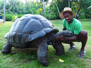 Bird Island, SeychellesEsmeralda the World's heaviest free roaming Giant Tortoise. The Royal Zoological Society say he broke the scales at 298kg (800lb) back in the 1980's. He lives with 19 other smaller tortoises on the island.