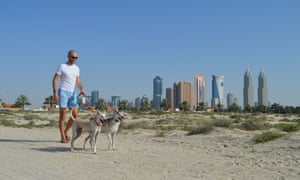 Pet dogs being walked on a beach with Dubai Media City.
