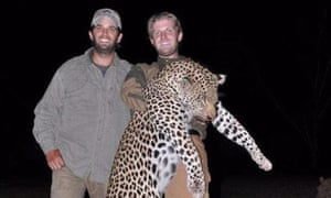 Donald Trump Jr and Eric Trump with a leopard they killed on a trip to Zimbabwe with Hunting