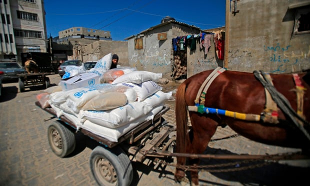 Image: A Palestinian man loads a horse-drawn cart with food aid provided by the UNRWA in Gaza