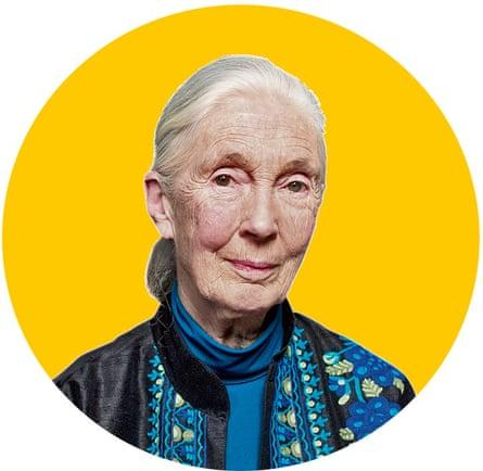 Dr Jane Goodall. London. Photograph by David Levene 27/10/17