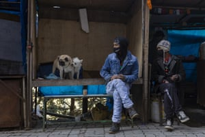 A man wearing a face mask waits with his dogs at an empty roadside stall in Dharmsala, India