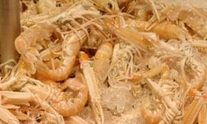 Fresh Irish prawns on sale in a Cork market