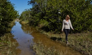 University of South Florida research Haley Hanson walks along a flooded road looking for invasive species.