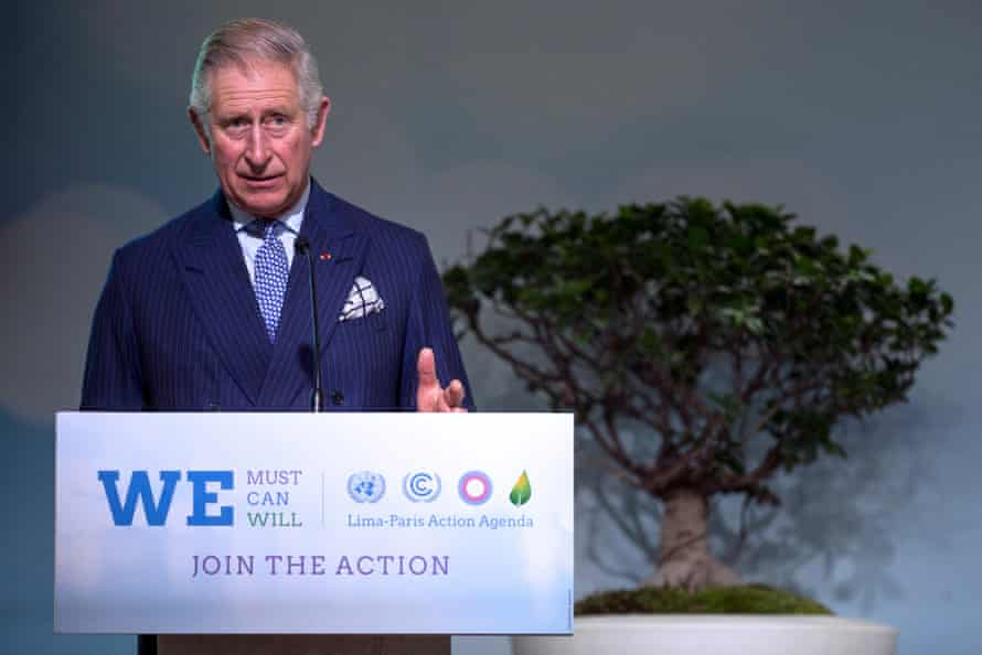 The Prince of Wales delivers a speech on forests during the COP21 climate conference in Le Bourget, north of Paris, France.
