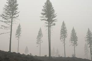 Spot fires smolder in a field in Estacada, Oregon