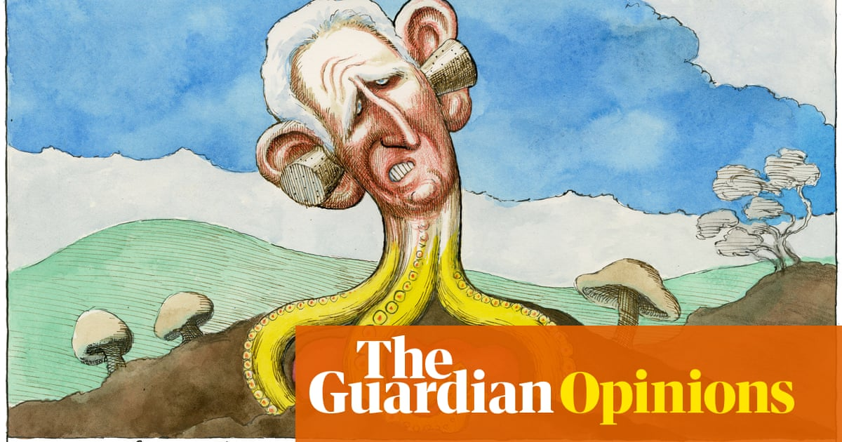 Steve Bell on Harry saying Charles stopped taking his calls — cartoon
