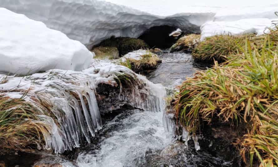 Cairngorms ice formations in streams.