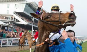Lord Windermere after winning the 2014 Cheltenham Gold Cup.