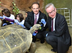 The director general of the Zoological Society of London, Dominic Jermey, and the environment secretary, Michael Gove, feed a giant Galapagos tortoise at London Zoo