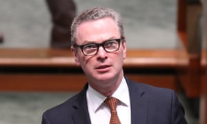 Former defence minister Christopher Pyne has been criticised for taking up a job with a major consulting group to help it expand its defence business.