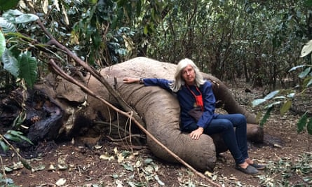 Sad story: Gallmann with an elephant killed by poachers on her land.