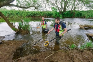 Aquatic ecologists Nick Monaco, right and Dr Peter Walker conduct an 'electrofishing survey' in the River Tone.