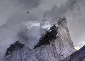 Andean condor in flight over mountain peaks in Torres del Paine national park, Chile by Ben Hall