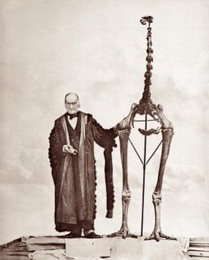 English biologist Sir Richard Owen with a giant moa skeleton