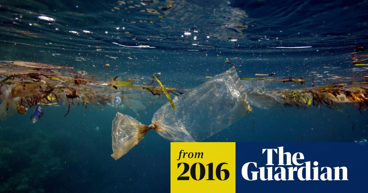 562630439cc England's plastic bag usage drops 85% since 5p charge introduced ...