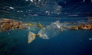 Plastic bag floating underwater at Pulau Bunaken, Indonesia.