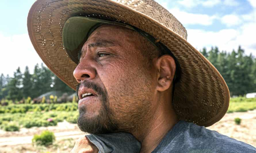 A farmworker in St Paul, Oregon, where a worker died of heat exposure last month