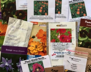 Time for a tidy up: just a few of Allan's huge collection of treasured seed packets.