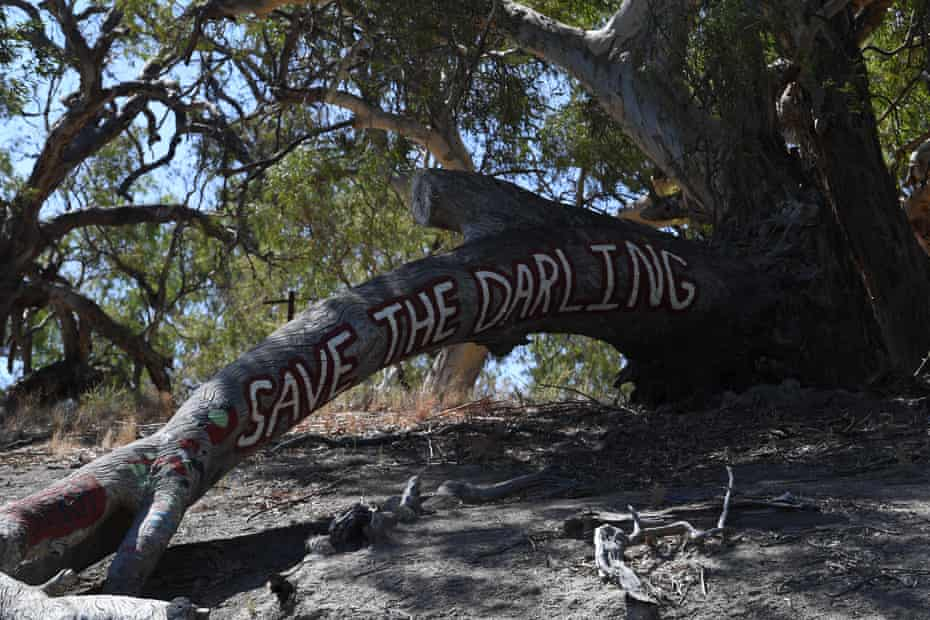 'It's fed us, and looked after us, and we really respect it,' says Badger Bates of the Darling river.