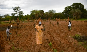 Refugees work the land in Guinea-Bissau
