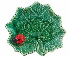 Ragwort leaf with ladybird.