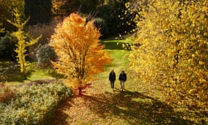 A couple stroll through the trees at Emmetts Garden