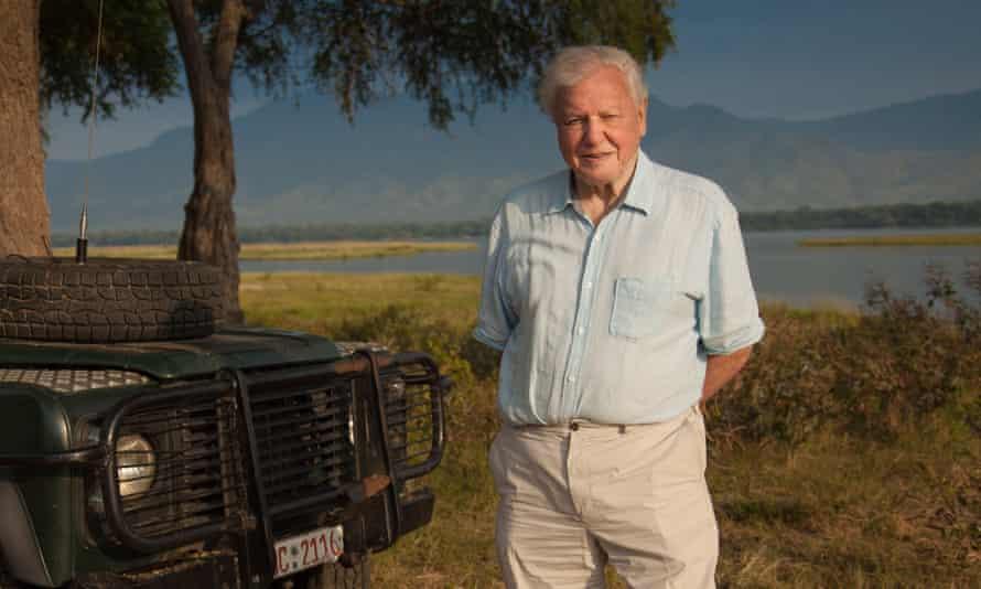 Sir David Attenborough on location