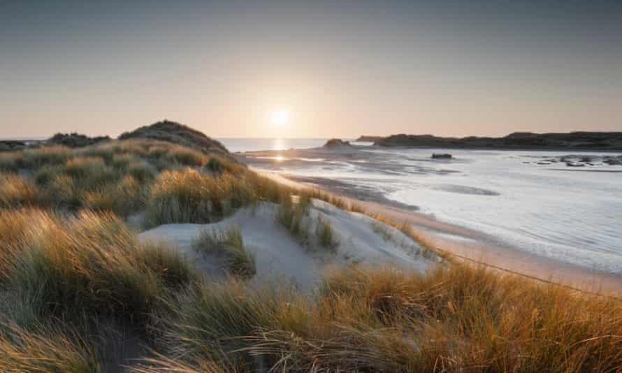 Dunes at Crow Point, Braunton Burrows. Devon, UK.