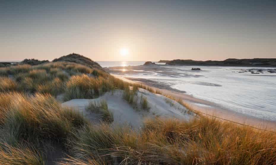 Braunton Burrows sand dunes, Devon, a Unesco biosphere reserve.