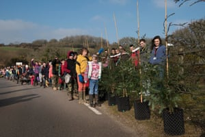 Planting of cloned Redwood trees - Eden Project. Lanlivery CP School.