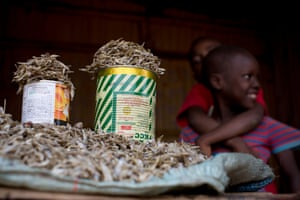 Two children sit next to a table stall with dried fish that are being sold to passers-by. The fish are caught in Lake Victoria, dried in the sun and then transported to Nairobi by truck and sold by the canful