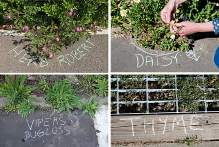 Chalkers say their work encourages connection with the natural world around us.